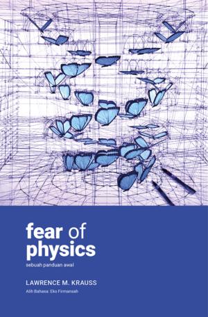 Fear of Physics_Antinomi